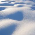 Sniegas.jpg